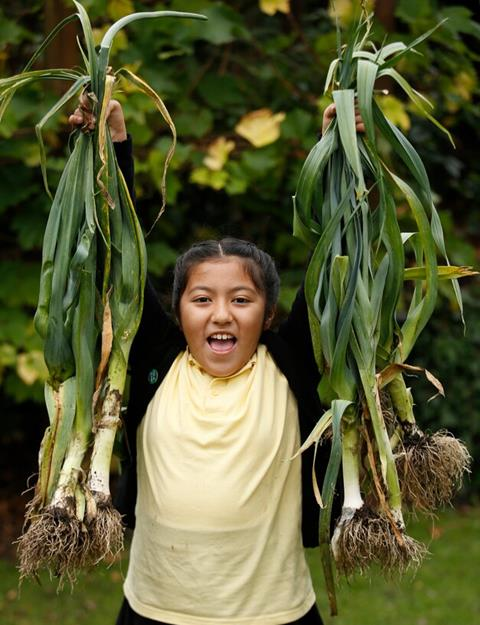 A primary school pupil wearing a yellow polo neck shirt holds up harvesting leeks.