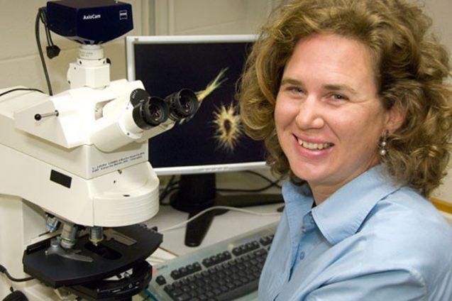 Biological oceanographer Sonya Dyhrman will help lead the effort.