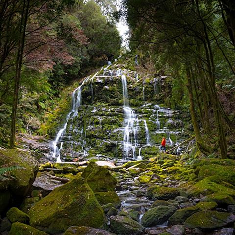 The stunning Nelson Falls - photo by Paul Fleming, courtesy of Tourism Tasmania