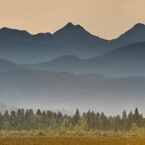 A picturesque landscape view of a field features foggy mountains and trees in the background