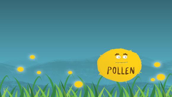 Pollen graphic