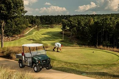 Carryall 500 - Greenkeeping