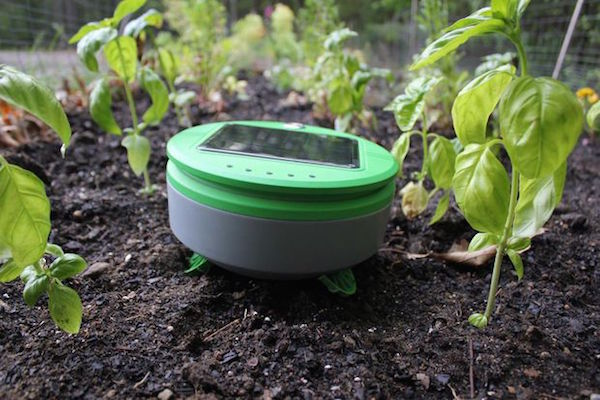 THE CREATOR OF THE ROOMBA HAS INVENTED A GARDENING ROBOT