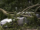 Extreme weather costs Alberta businesses big bucks