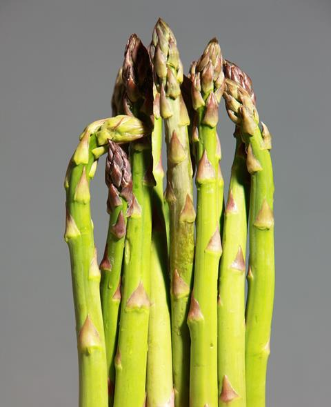 Bury Lane 1st Picked Asparagus 2018
