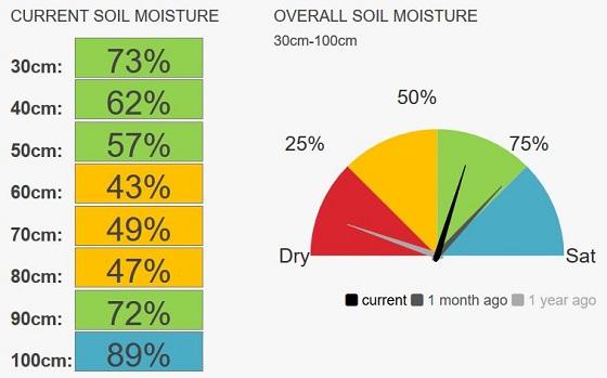Raywood speedos current soil moisture 56%