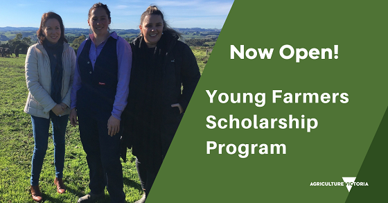 Young farmers scholarship