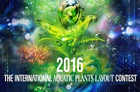 IAPLC2016 Contest - nevezz te is!