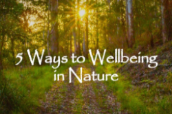 5 Ways to Well Being