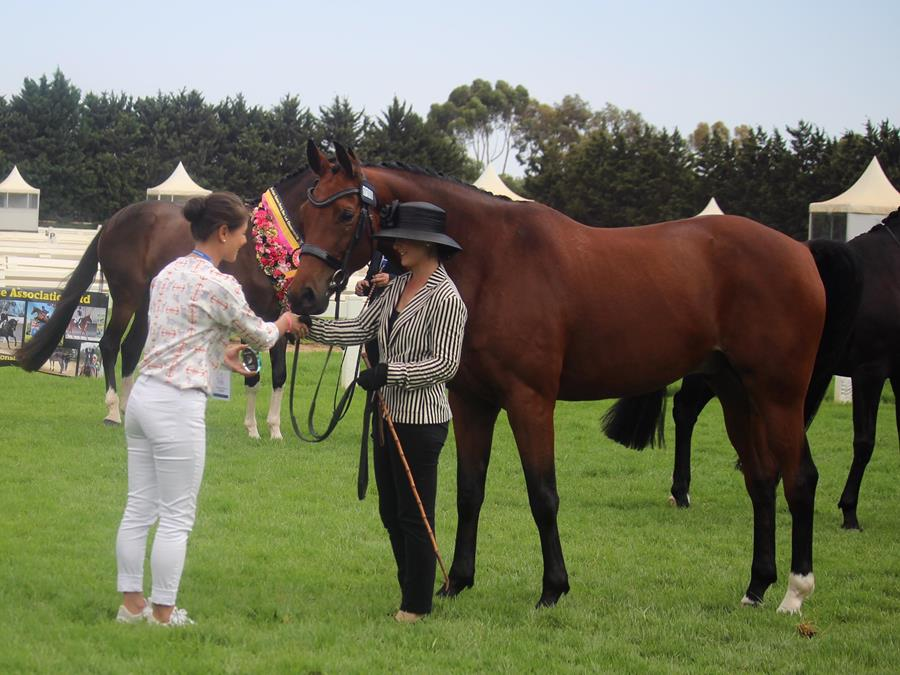 Sidney Hoffman receives the Boutique Equines Polished Look Crystal Award from Katherine Dunstan owner of Boutique Equines.