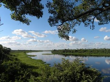 Panoramic view of Chaco-Pantanal from Three Giants viewing platform. © Guyra Paraguay.