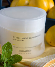 Giovanni Lemon Salt Scrub