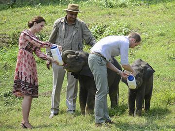 Duke and Duchess of Cambridge with Vivek Menon. © Idris Ahmed/ WTI
