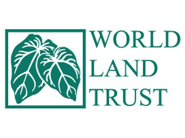 WLT logo.
