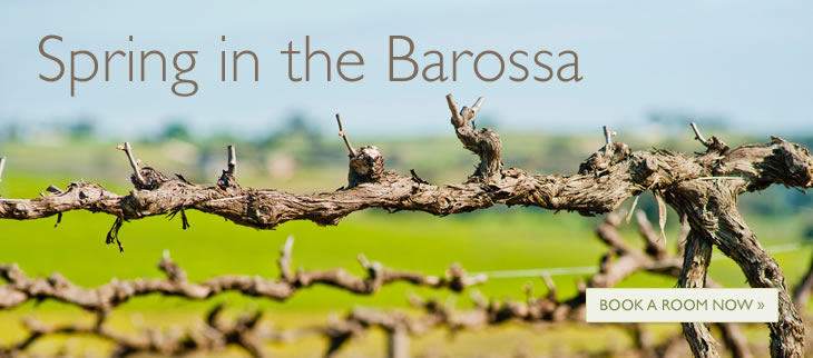 Spring in the Barossa - Book a Room Now